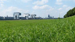 Pollerwiesen groß